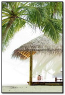Palms Beach Pavilion