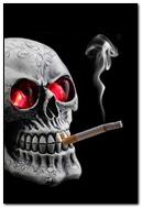 흡연 해골