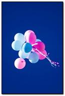 Flying Balloons In Blue Sky