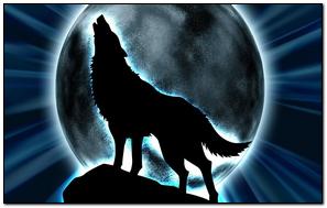 Wolf Moon Black.