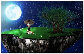 Night Rain 219