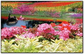 Dream Garden 231