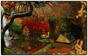 Autumn Wood 216!