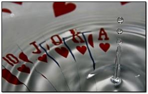 Acqua Cards