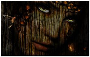 Wooden Art 800 X 480