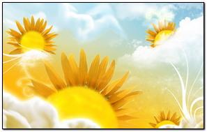 Słonecznik 136
