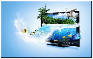 Exotic Tv