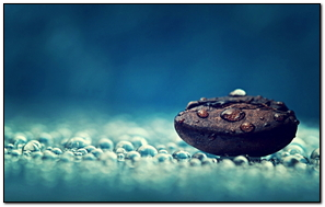 Water Drops On Coffee Bean