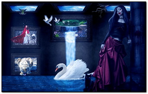 Dark Room Live Picture 363