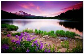 Hồ núi