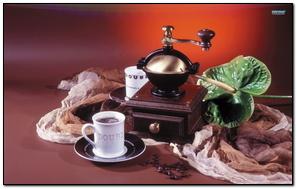Bộ cà phê