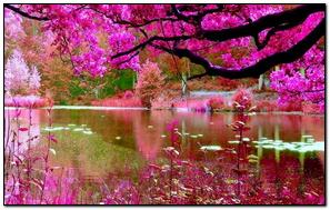 Thiên nhiên hồng