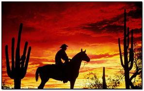 Coucher de soleil Cowboy
