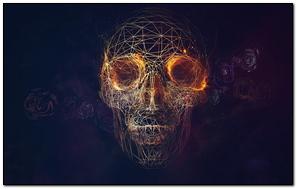 Skull Lines Roses Geometry