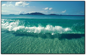 Clear Sea Wave