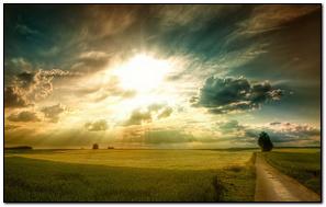 Sunny Fields HD (1920x1080)