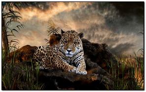 Impresionante leopardo