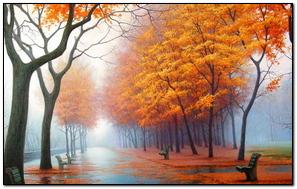 Autumn Park Avenue Benches Trees Leaf