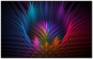 Feathers Flower Petals Rays Line volume Symmetry
