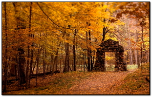 Wall Aperture Wood