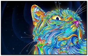 Cat Wallpaer
