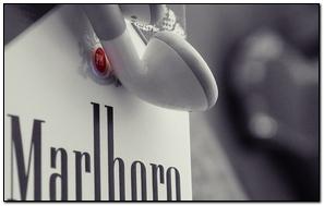 Marlboro Cigarettes Apple Headphones Brand