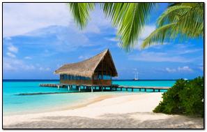 Tropics Building Sand Palm Trees Beach