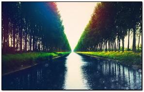 River Flow Shore Lights Trees