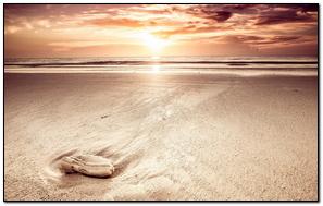 Sand Sea Beach Sky Light