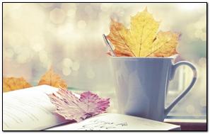 Leaf Cup Book Autumn
