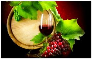 Fresh Wine
