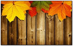 Autumn On Wood