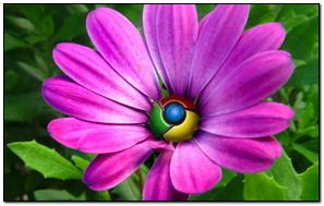 Google Flower