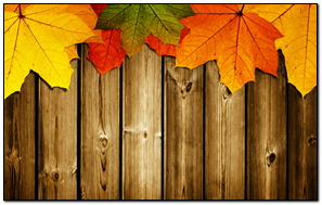 Autumn On Wood