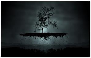Flying Tree At Night