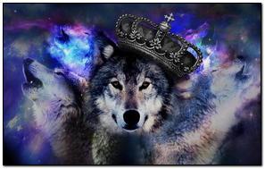 Król wilka