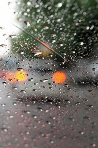 น้ำฝน