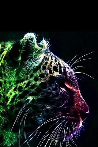 Color Leopard