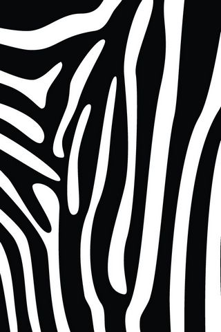 Zebra Print - Home/Lock Screen IP4