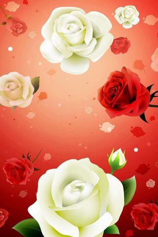 Hoa hồng-nghệ thuật