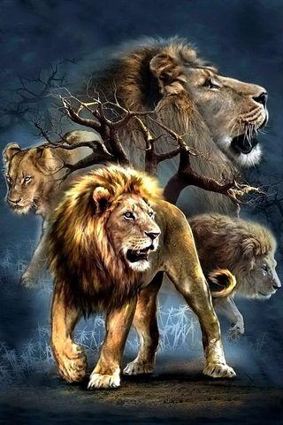 ライオンコラージュ