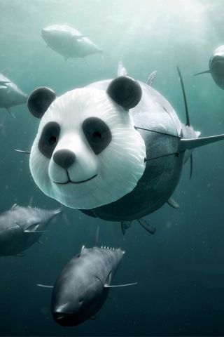 If I Were Panda