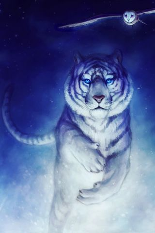 White-Tiger-Owl-Art