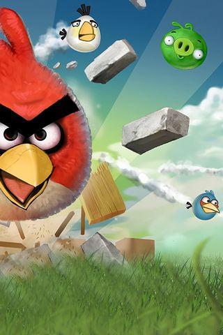 愤怒的小鸟飞翔