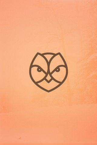 ForestLife Owl