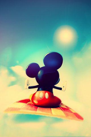 Netter Mickey