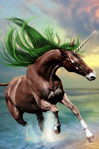 Young Unicorn