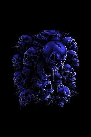 Skulls & Spiders