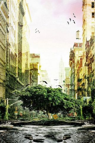 Fantasy Tree City