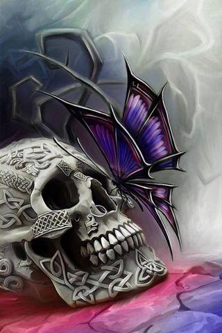 Cráneo y Mariposa